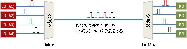 about-wdm-1