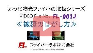 FL-001J_2