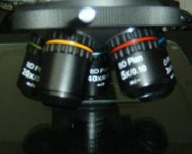 KOZO-ms-ob-lens-bd